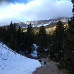 Accessible trail to Blue Lake