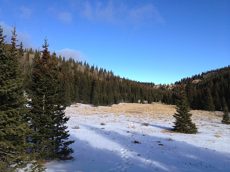 Saddle on Indian Trail