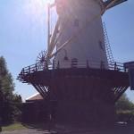 Molen Rotterdam