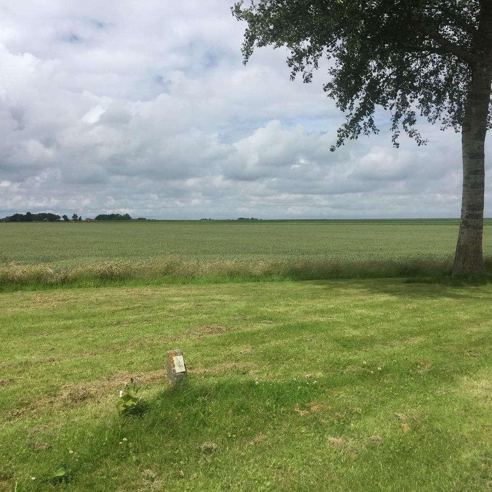 veld in de buurt van Hallum, Friesland