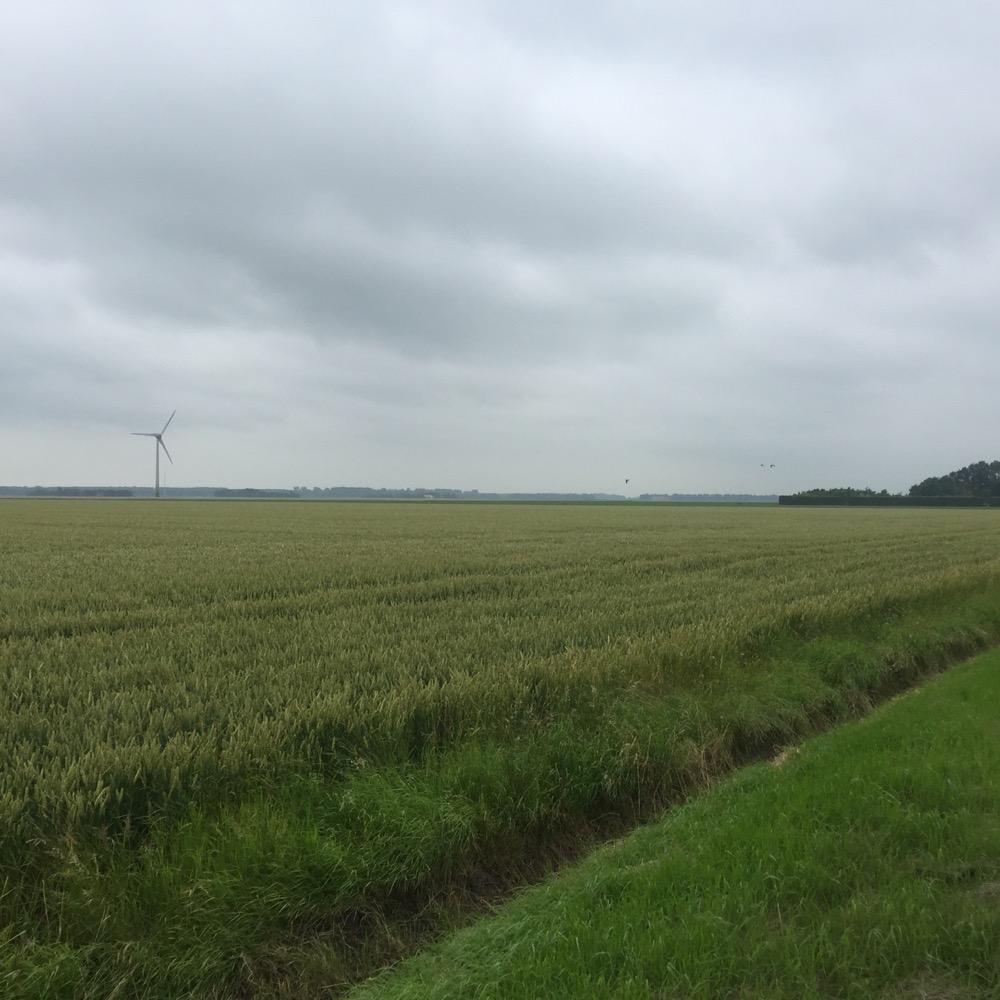 nieuwe windmolen in een veld