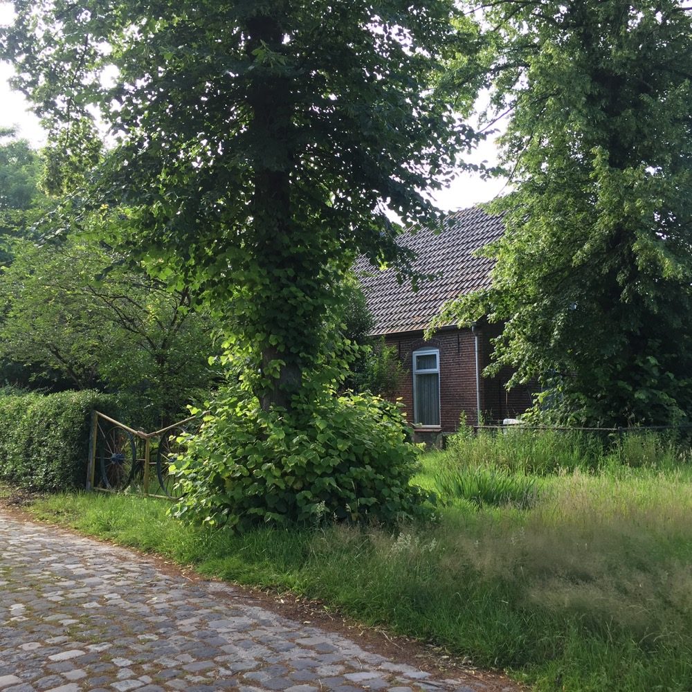 Valkenswaard, Noord Brabant
